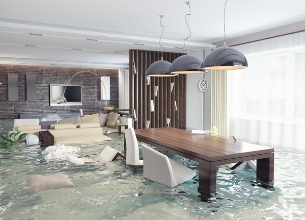 How to Determine Your Home's Water Damage Risk Before It's Too Late